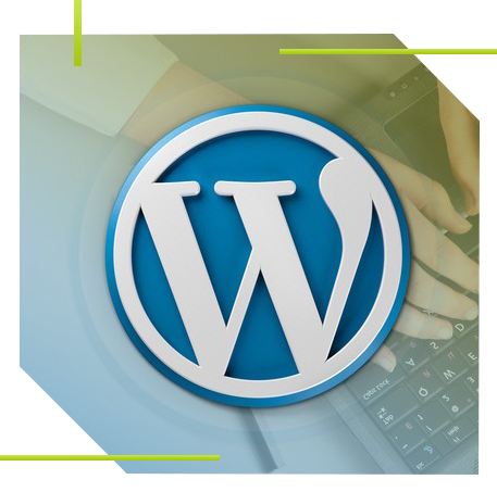 Wordpress Development Services USA